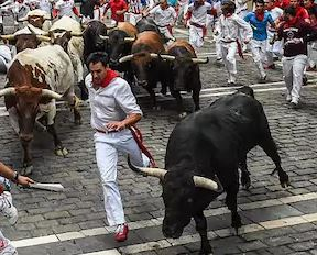 Investors Continue Buying Bonds As 'The Most Hated Bull Market' Is Still A Thing