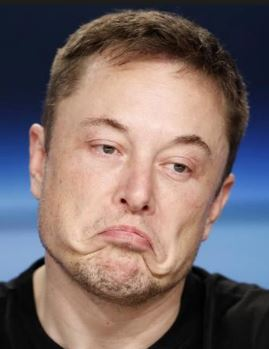 Elon Musk: Take The Good With The Bad
