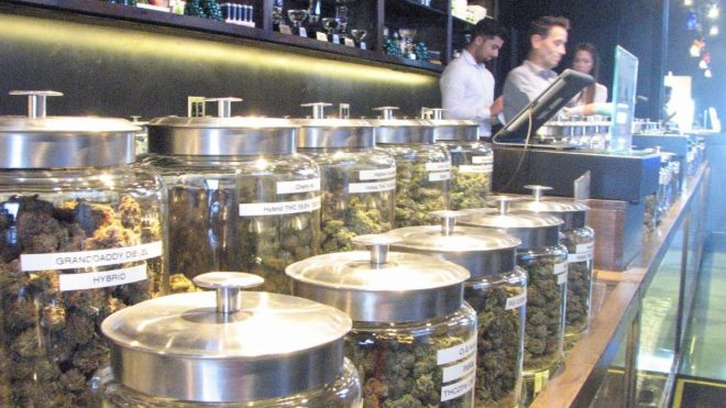 What Legal Pot Adds to CO's Budget: +$250 million